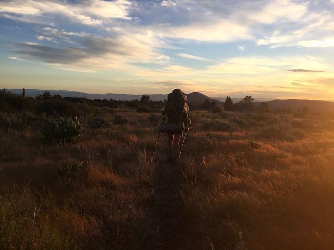 Pacific Crest Trail Rear View Nature Sunset Full Length Real People One Person Sky Landscape Walking Adventure Grass Standing Beauty In Nature Hiking Lifestyles Leisure Activity Tranquil Scene Field Backpack Tranquility Cloud - Sky California Scenics