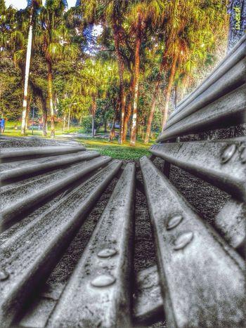 EyeEm Best Shots - Nature Perspectives EyeEm Best Edits My Edit