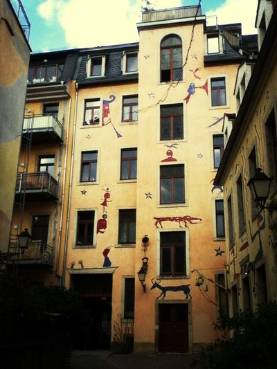 Study Dresden