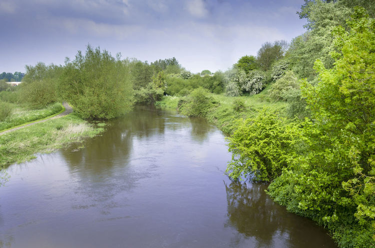 Beauty In Nature Berkshire Foliage Green Greenery Lush Foliage Nature Outdoors Reading Reflection River River Kennet Scenary Tranquility Water Water Reflections Waterway