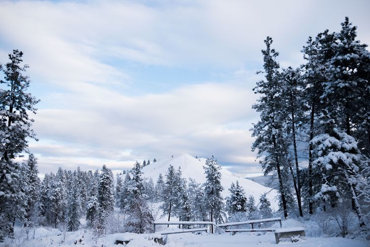 Morning snow Kelowna Canada Sky Scenics White Color No People Day Outdoors Landscape Frozen Mountain Snowcapped Mountain Cloud - Sky Tranquility Tranquil Scene