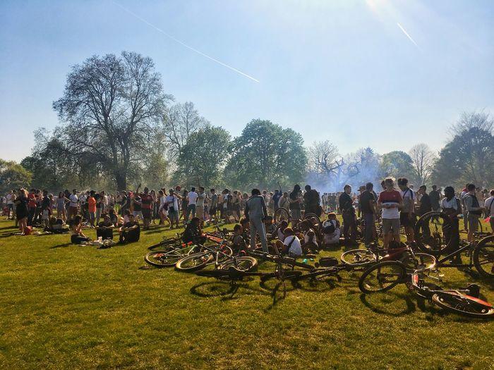 Hyde Park on