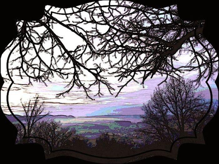 Aussicht auf Dornach von Ruine Dornek aus Nebel Nebelmeer Panorama Dornach Schweiz Comic Style Stillife Tarinera Bäume Winter Kalt