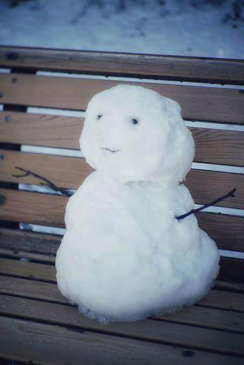 雪だるま ベンチ Snowman Snowman⛄ Snow ❄ Bench Park Smiling Face Fragility After Snowing Day From My Point Of View Winter Day Shinjuku Gyoen National Garden 新宿御苑 Tokyo,Japan