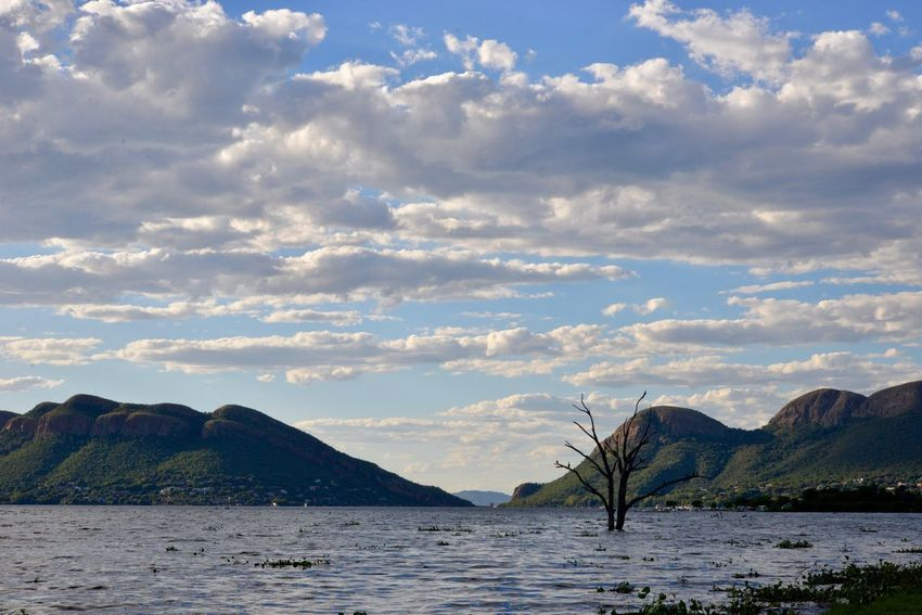 Hartbeespoort dam . Meerhof oewer. South Africa Cloud - Sky Mountain Sky Nature Scenics Beauty In Nature Tranquil Scene Tranquility Outdoors No People Water Lake Day Mountain Range Landscape Tree MeerhofSouthafrica Meerhofskool South Africa Is Amazing South Africa