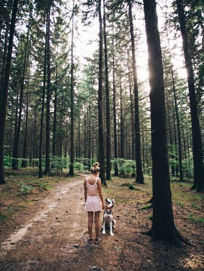 Rear view full length of woman standing with dog at forest