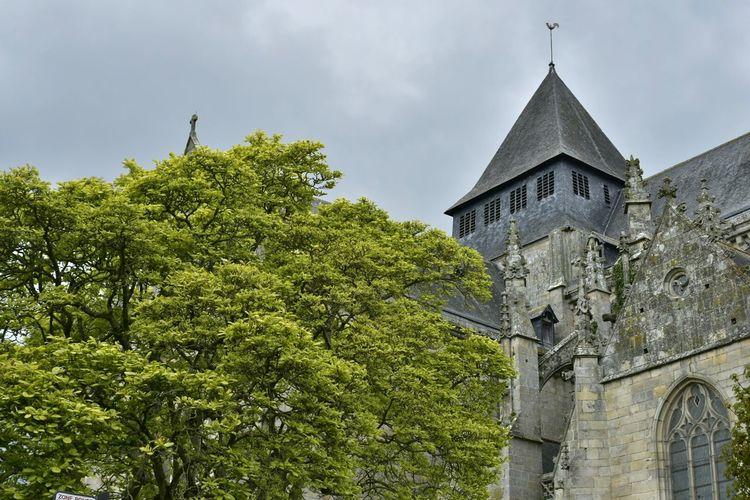 Church Church Tower Tree Check This Out Dinan Bretagne France