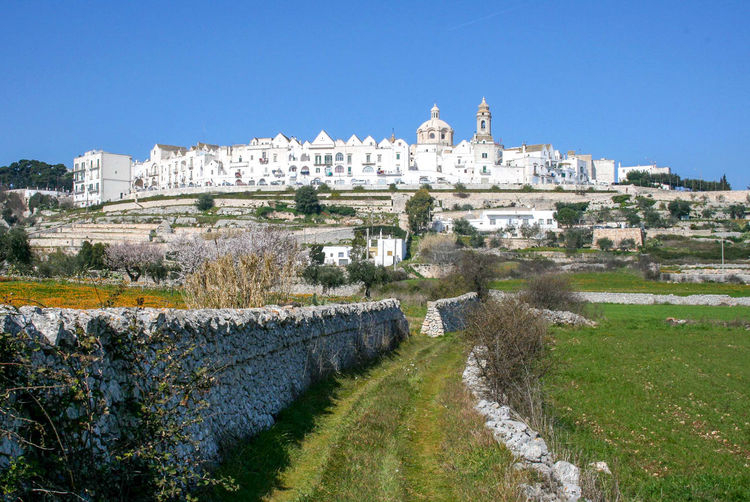 View of Locorotondo in spring, beautiful city in South Italy with white typical houses and countryside in Puglia Italy Green Houses Locorotondo Puglia Rural Wall Ancient Architecture Building Exterior Built Structure City Grass History Italy Landscape Nature Old Outdoors Stone Stone Wall Travel Destinations Tree Valle D'itria White White Background