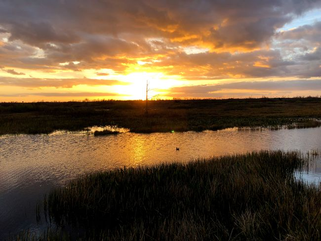 Sun on the river Sunset Cloud - Sky Scenics Nature Beauty In Nature Sky Reflection Water Tranquil Scene Tranquility Lake Outdoors Dramatic Sky Grass Landscape No People Tree Day Growth