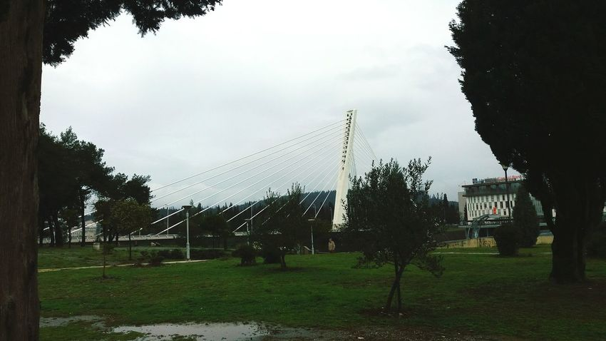 Tree Grass Outdoors No People Day Sky Nature Bridge Millenium Milleniumbridge Podgorica,Montenegro Podgorica Montenegro Crna Gora Rainy By.Dalila 💫 Adventures In The City