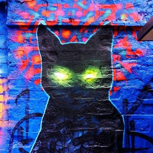 Graffiti Art Grafitti Streetart Cat Light Spray Paint Marko93 Street Art/Graffiti Streetcolour Glowinthedark