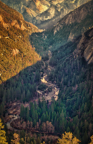 Yosemite valley Yosemite National Park Yosemite California United States Nature Agriculture Full Frame Scenics High Angle View Growth Outdoors Tree Beauty In Nature Landscape Tranquility Field Tranquil Scene No People Day Aerial View Rural Scene Backgrounds Sky Go Higher End Plastic Pollution