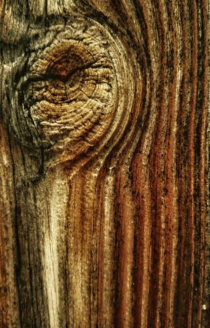 Knot. Detail Close Up Nature Patterns In Nature Textures And Surfaces Texture Textures Wood Grain Wood Texture Wood Grain Texture Wood Wood Knot Patterns In Wood Knot Abstract Decay Wood Decay Weathered Weathered Wood