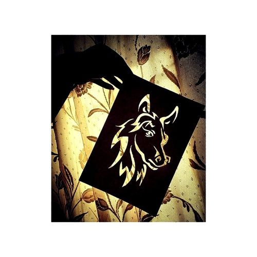 the stencil art is mine nd so also the pic #horse #ByMe #beautiful #likeforlike #likemyphoto #qlikemyphotos #like4like #likemypic #likeback #ilikeback #10likes #50likes #100likes #20likes #likere Gold Gold Colored Frame Picture Frame First Eyeem Photo EyeEmNewHere