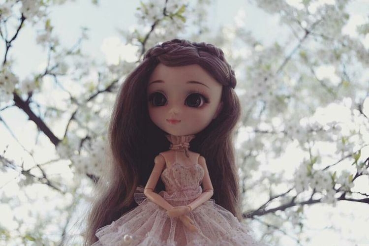 One Girl Only Day Nature Outdoors Long Hair Tree One Person Portrait Nature Looking At Camera Doll Doll Photography DollPhotography Dollphoto Doll Face Dollphotogallery Pullip Pullip Dolls EyeEmRussianTeam