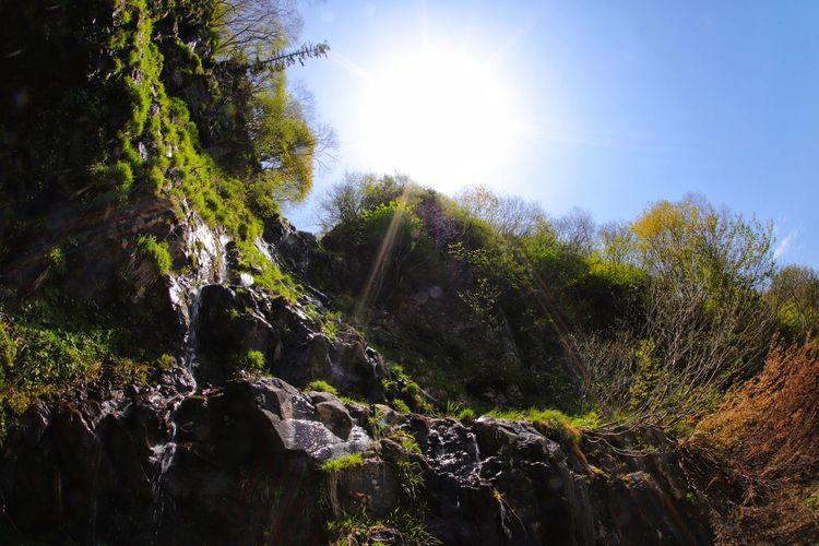 今月も緩~くよろしくお願いします😆おはよう~ 一目惚れんず Tree Water Spraying Forest Motion Sunlight Sky Shining Flowing Water