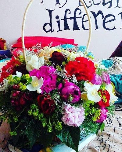Cea mai frumoasa dimineata🌌💐😻Dimineatafrumoasa Surprise Dragoste Flori