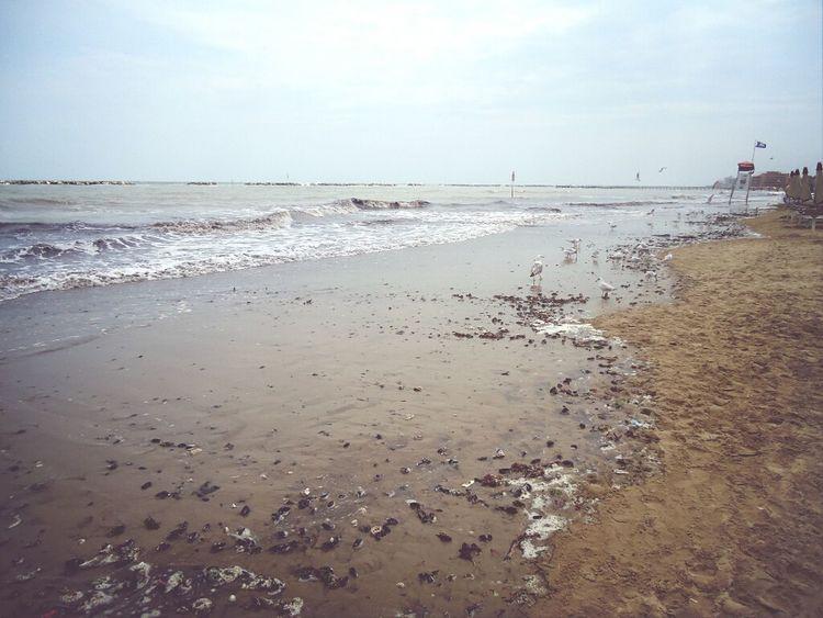 Sea Follow4follow Italy Memories <3