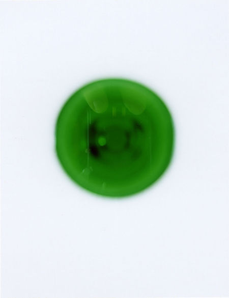 Freshness Fuji Fp 100C Glass Glass Reflection Green Green Green Color Grün Menthe Menthe Vert Menthe à L'eau Minth Minze Organic Polaroid Polaroid Art Polaroid Pictures Ve Vert The Still Life Photographer - 2018 EyeEm Awards