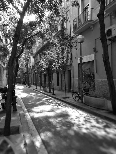 Tree Built Structure The Way Forward No People City Black And White Photography Barcelona Streets Of Barcelona