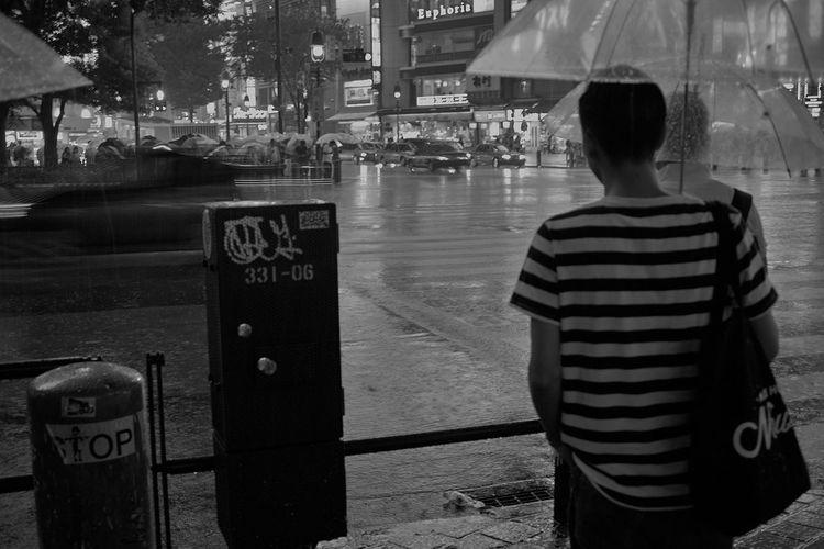 Sigma Dp2 Shibuya Shibuyacrossing Rain