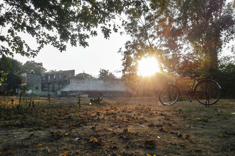 Rise n shine 🌄 and peddle 🚴♂️💪😊 InMakin! Sunbeam Sky Outdoors Nature Tree Day Sunlight Cycle Bicycle PhonePhotography Randomness EyeEm Ready   Mobility In Mega Cities Colour Your Horizn