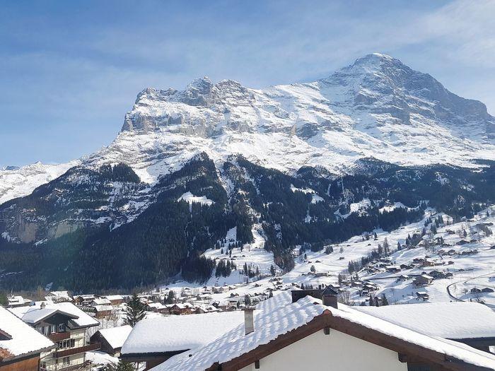 Jungfrau Mt,