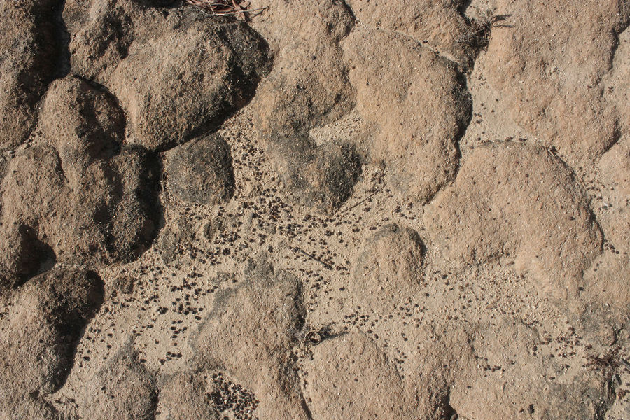 Dry Geology Rock Rock Formation Rough Sand Texture Textured