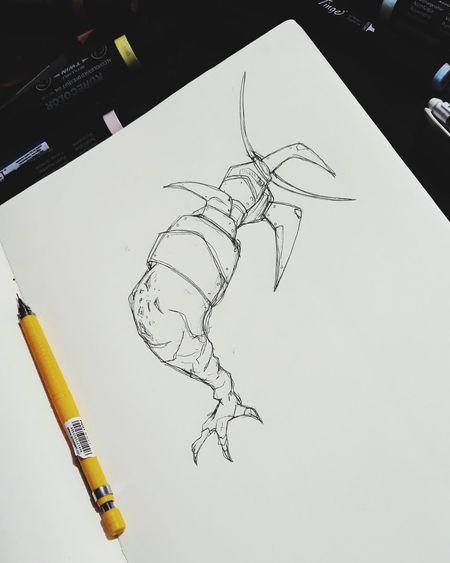 Art SkecthArt Illustration Drawing Sketchbook Studio Shot No People Close-up White Background Ink Bird Day