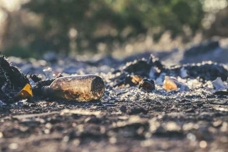 Close-up of cigarette on land