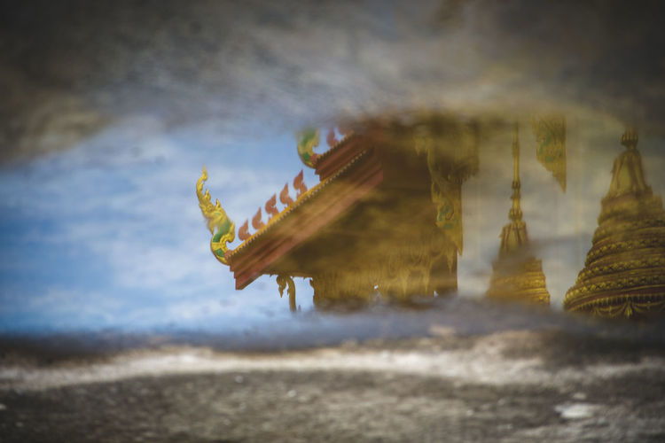 temple in the water Animal Animal Themes Animal Wildlife Animals In The Wild Architecture Beauty In Nature Close-up Cloud - Sky Day Land Nature No People One Animal Outdoors Plant Reflexions Sea Selective Focus Sky Spirituality Temple Water