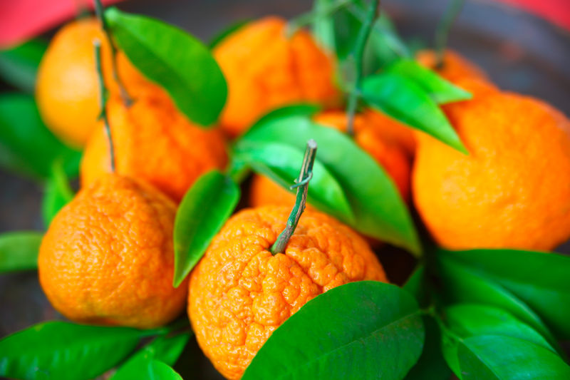 Fresh leaves on tangerines Ripe Plant Nature No People Green Color Citrus Fruit Healthy Eating Freshness Orange Color Food Close-up Tangerines Fresh Fruit Leaves Foliage Lucky Symbol Chinese New Year Asian Luck Symbol Fresh Produce Textures Studio Shot Colorful Nutritious