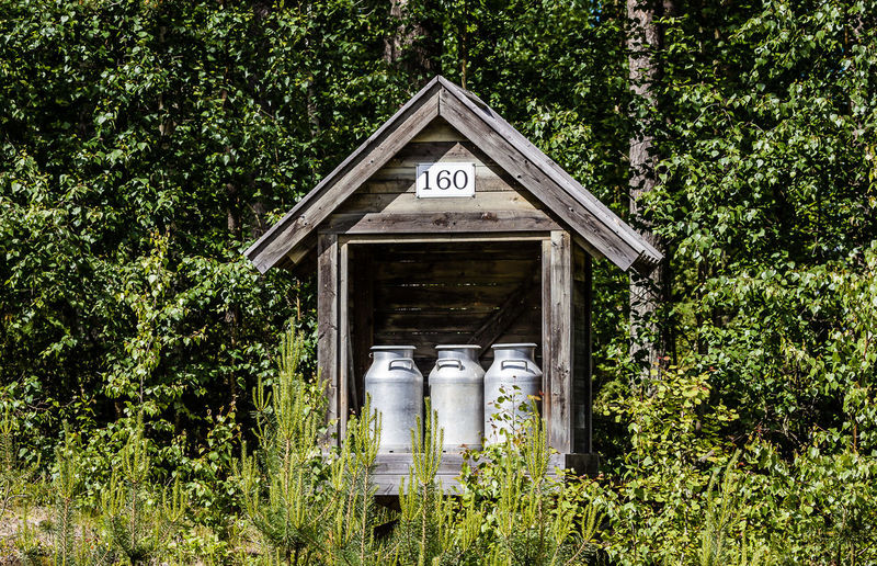 Canisters in wooden structure against trees