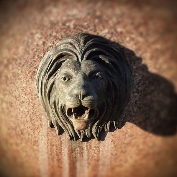Fountain Mattroeartist Derby Shelton Lion Riverwalk