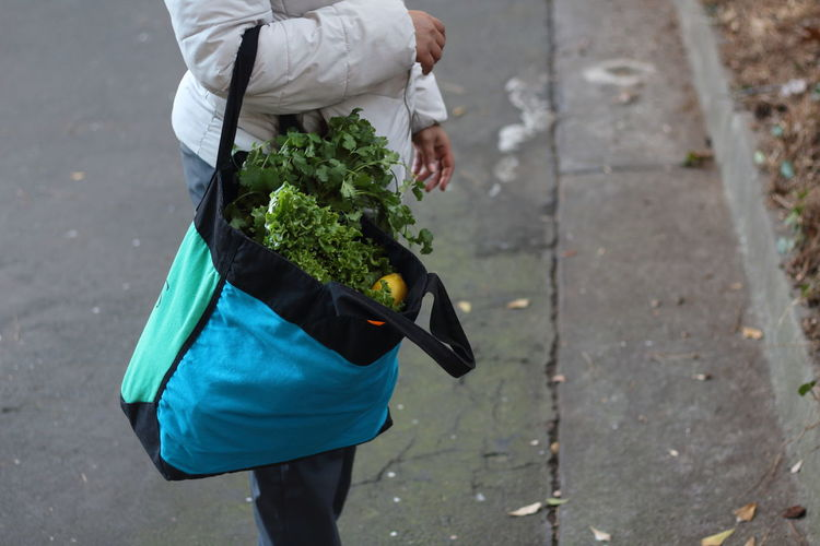 Midsection of person holding bag with vegetables while standing on road