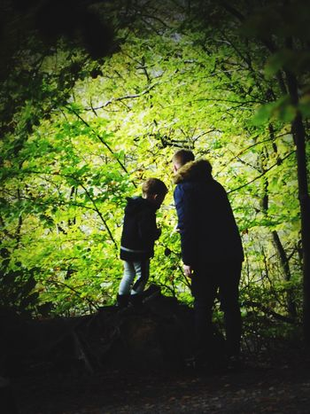 Denmark 🇩🇰🇩🇰🇩🇰 Wilderness Father And Son Time Forrest Photography Full Length Two People Tree Standing Togetherness Love Leaf Nature Friendship Real People Bonding Outdoors Forest Plant Men Women Couple Day Together Friend Autumn🍁🍁🍁