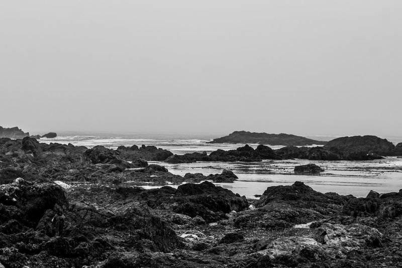 Rocky shores on Vancouver Island. Misty Day Rocky Beach Cove Tofino British Columbia Uculet Beach Beauty In Nature Canada Day Horizon Over Water Landscape Nature No People Outdoors Rock - Object Scenics Sea Seascape Sky Tranquil Scene Tranquility Water