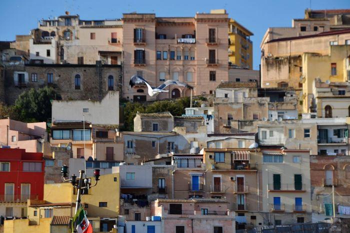 City Town Porto Port Gabbiano Seagull Sea Casette Mare Sciacca Sicilia Sicily Coulors Colori Sky