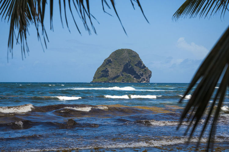 Martinique, Rocher du Diamant Martinique Beach Beauty In Nature Horizon Horizon Over Water Islandlife Land Nature No People Outdoors Palm Leaf Palm Tree Rock Rock - Object Scenics - Nature Sea Sky Solid Stack Rock Tranquil Scene Tranquility Tropical Water