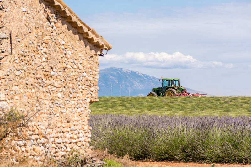 Something old, something new. Agricultural Machinery Agriculture Agriculture Photography Architecture Built Structure Cloud Cloud - Sky France Grass Harvested Lavender Field Landscape Mountain Rural Scene Sky Tractor Tranquil Scene Valensole Working Hard