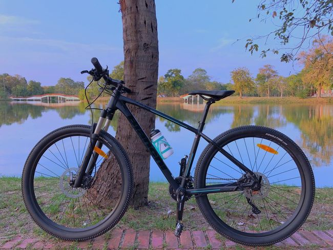 Celeste Bianchi Bianchi JAB 27.3 Bicycle Transportation Tree Mode Of Transport Land Vehicle Lake Nature Water No People Outdoors Day Beauty In Nature Grass Sky