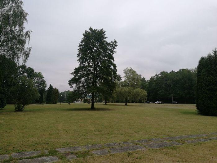 Katowicki Park