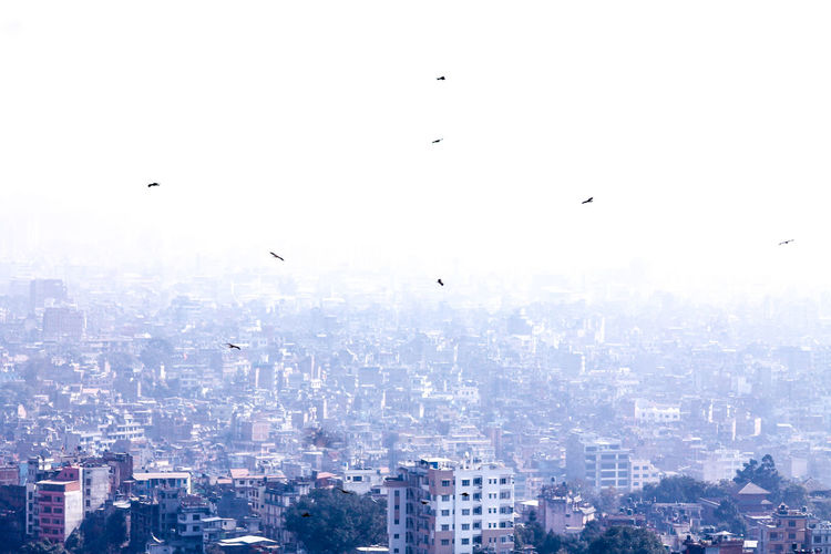 Kathmandu, Nepal Fog Over The City Cityscape View Of Kathmandu From Swayambunath Flying Bird Mid-air City Sky Cityscape No People Animal Themes Travel Destinations Animals In The Wild Outdoors Nature Spread Wings Flock Of Birds Beauty In Nature Day Travel Travel Photography