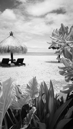 Black And White. Benoa. Bali.