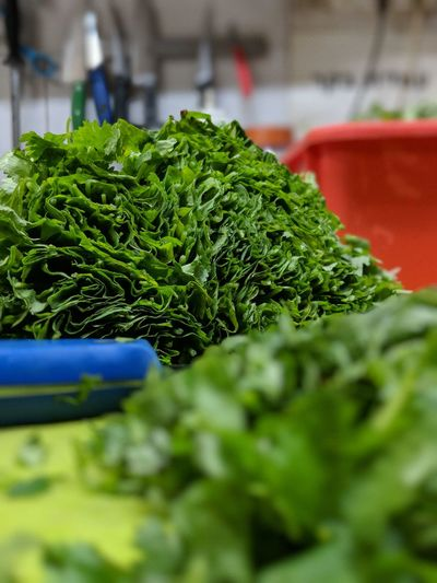 Close-up Day Food Food And Drink For Sale Freshness Green Green Color Healthy Eating Indoors  Large Group Of Objects Market No People Organic Raw Food Retail  Selective Focus Still Life Vegetable Wellbeing