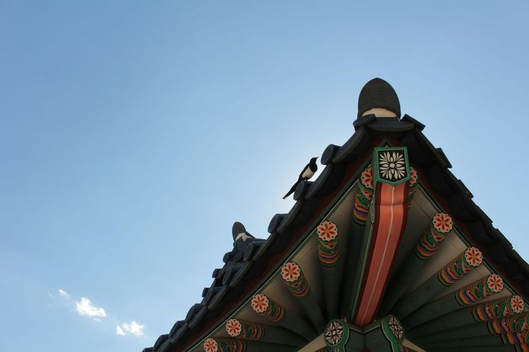Gyeongbokgung Palace, Seoul Korean Roof Tile Magpie Sky First Eyeem Photo