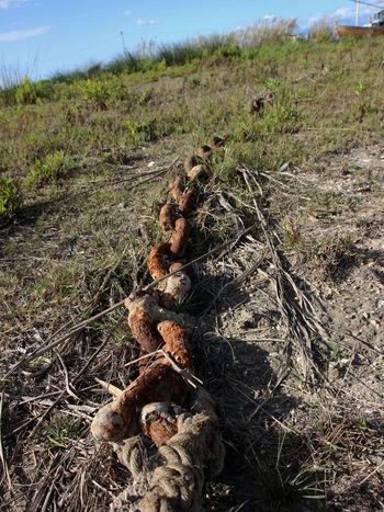 Alt Ankerkette Ausrangiert Field Grass Ohne Funktion Outdoors Verrostet