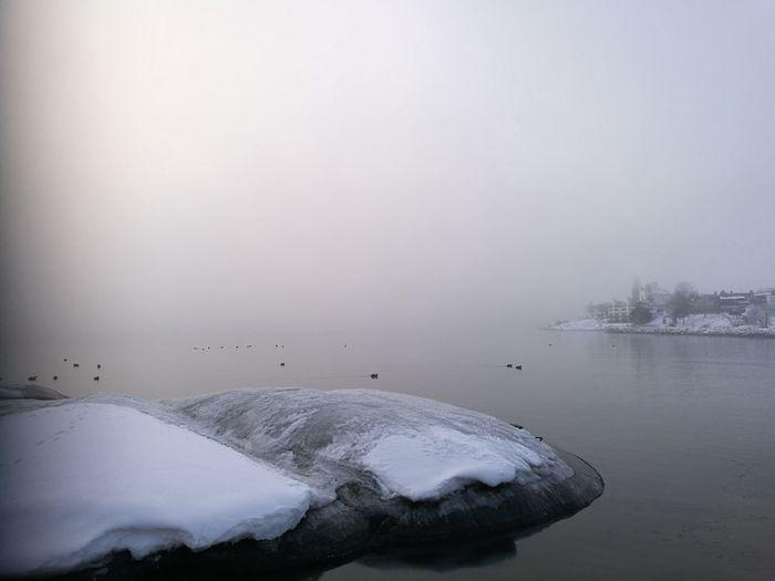 Sea. Fog Water
