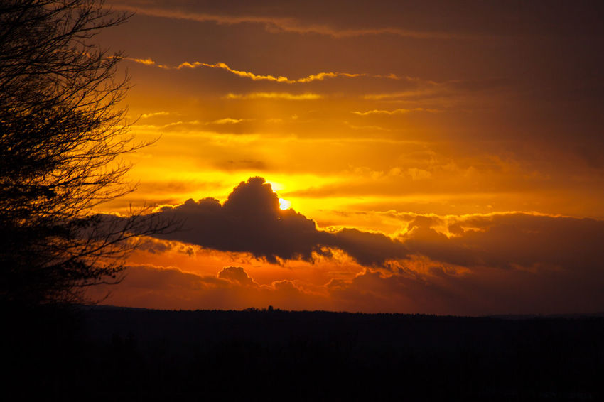 Beauty In Nature Cloud - Sky Day Landscape Nature No People Outdoors Scenics Silhouette Sky Sunset Tranquil Scene Tranquility Tree