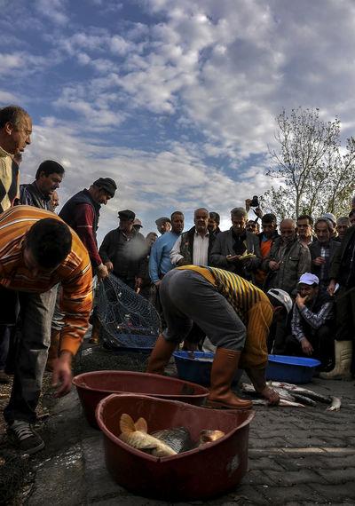 fish selling